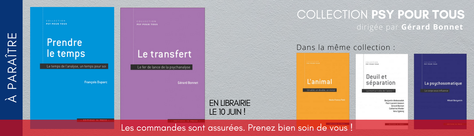 Bannière Site In Press (6)
